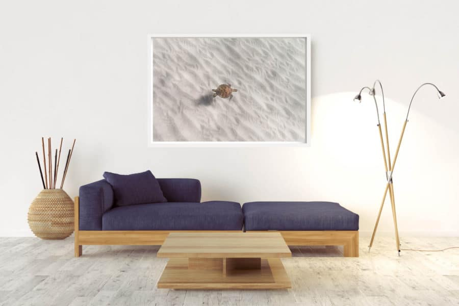 Angel | Byron Bay - Box Frame (White) - No Border