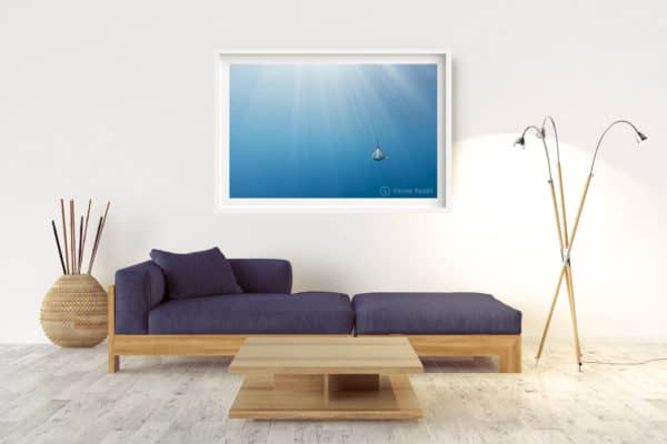 Evolution | Pacific Ocean - Box Frame (White) - With Border