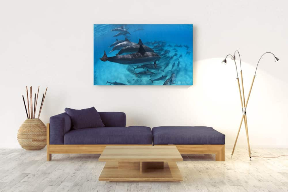 Fifty | Pacific Ocean - Acrylic Wall Mount