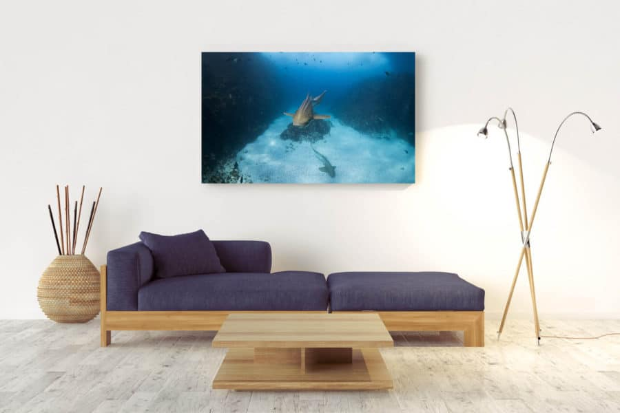 Graceful | Byron Bay - Acrylic Wall Mount
